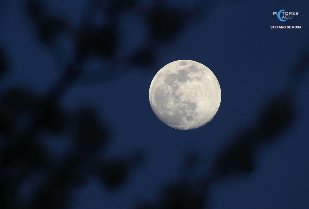 Waiting for the SuperMoon_1